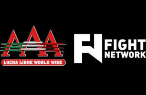 Flash-AAA-Figth-Network