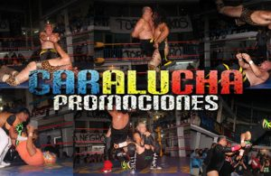 Flash-Caealucha-110616